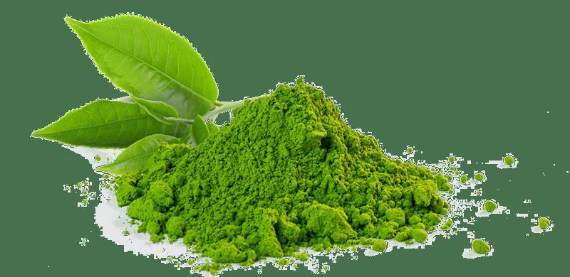 Zöld tea hatékonysága